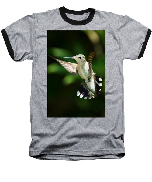 Hummingbird Baseball T-Shirt