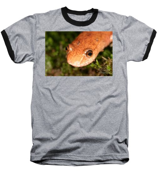 Spring Salamander Baseball T-Shirt by Ted Kinsman