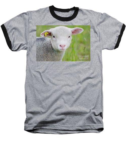 Young Sheep Baseball T-Shirt