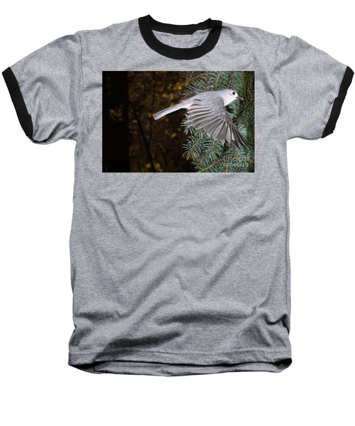 Tufted Titmouse In Flight Baseball T-Shirt by Ted Kinsman