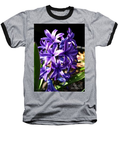 Baseball T-Shirt featuring the photograph Hyacinth Named Peter Stuyvesant by J McCombie