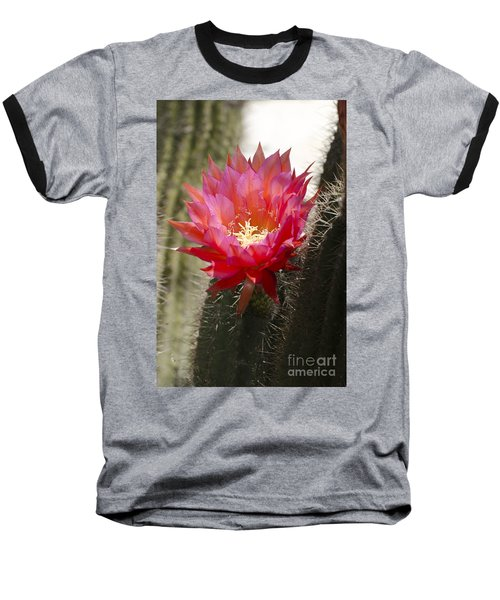 Red Cactus Flower Baseball T-Shirt