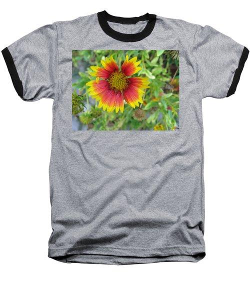 Baseball T-Shirt featuring the photograph A Beautiful Blanket Flower by Ashish Agarwal