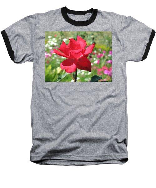 A Beautiful Red Flower Growing At Home Baseball T-Shirt by Ashish Agarwal
