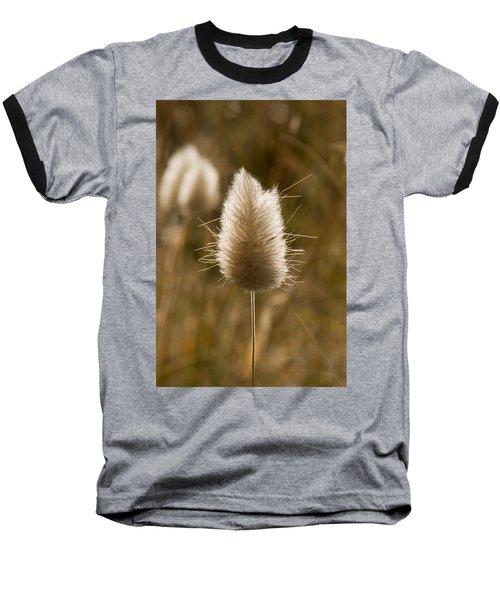A Beautiful Seed Pod With Beautiful Sun Reflection Baseball T-Shirt