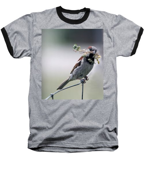 Baseball T-Shirt featuring the photograph A Bird And A Twig by Elizabeth Winter
