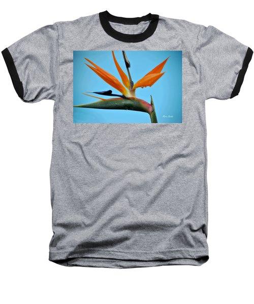 A Bird By The Pool Baseball T-Shirt