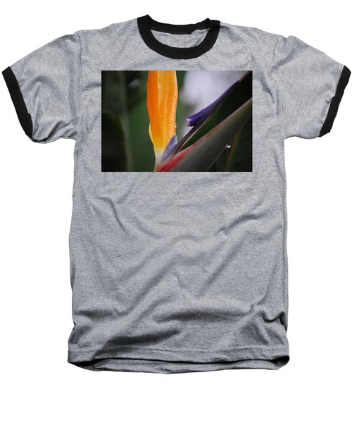 A Bird Of Paradise I Baseball T-Shirt
