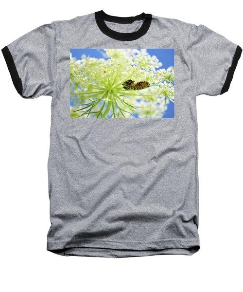 A Caterpillars Palace Baseball T-Shirt
