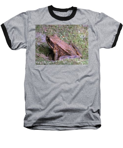 Baseball T-Shirt featuring the photograph A Friendly Frog by Chalet Roome-Rigdon