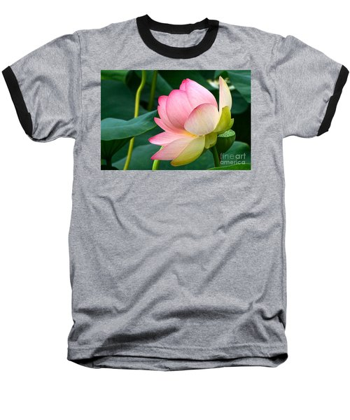 A Gentle Unravelling Baseball T-Shirt