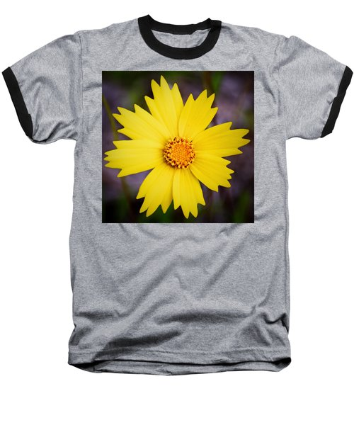 A Little Sunshine Baseball T-Shirt