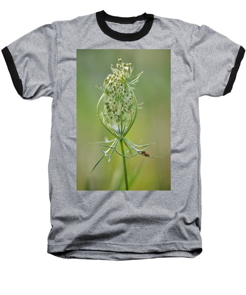 Baseball T-Shirt featuring the photograph A Meal Of Lace by JD Grimes