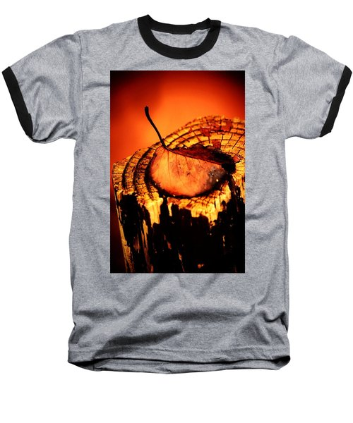 Baseball T-Shirt featuring the photograph A Pose For Fall by Jessica Shelton