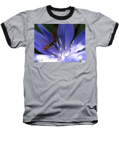 Baseball T-Shirt featuring the photograph A Quiet Moment On The Chicory by J McCombie