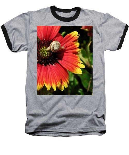 A Snail's Pace Baseball T-Shirt