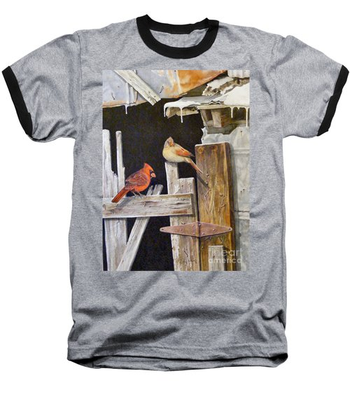 A Visit To Daddy's Barn  Sold Baseball T-Shirt