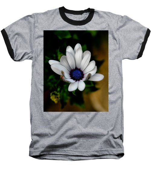 Baseball T-Shirt featuring the photograph African Daisy by Lynne Jenkins