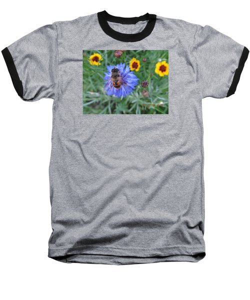 Baseball T-Shirt featuring the photograph Afternoon Feeding by Tina M Wenger