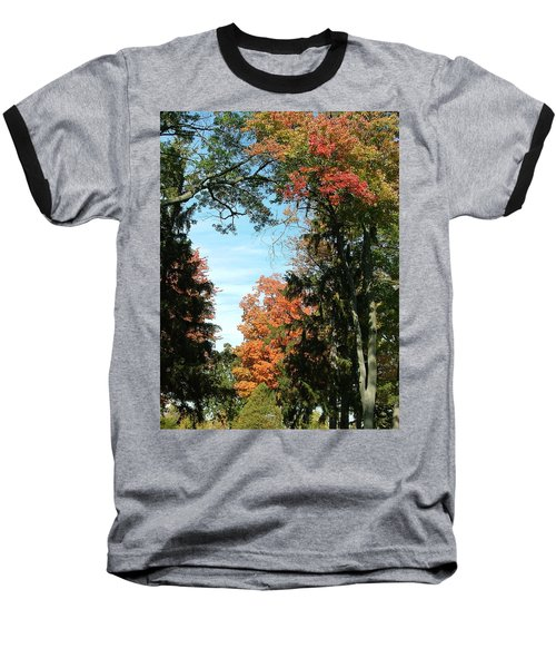 All The Trees Baseball T-Shirt