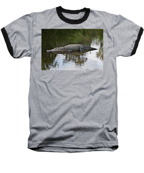Alligator 1 Baseball T-Shirt by Joe Faherty