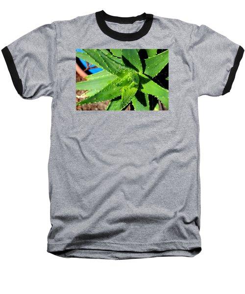Aloe Baseball T-Shirt