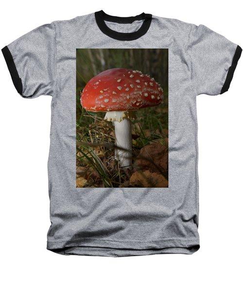 Amanita Muscaria Baseball T-Shirt