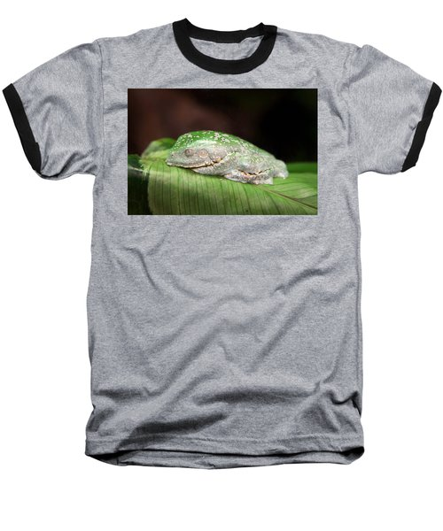 Amazon Leaf Frog Baseball T-Shirt