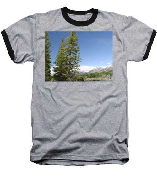 America The Beautiful Baseball T-Shirt by Living Color Photography Lorraine Lynch