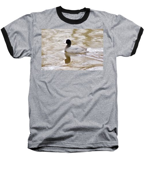American Coot 1 Baseball T-Shirt by Joe Faherty
