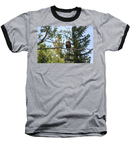 American Eagle Baseball T-Shirt by Living Color Photography Lorraine Lynch
