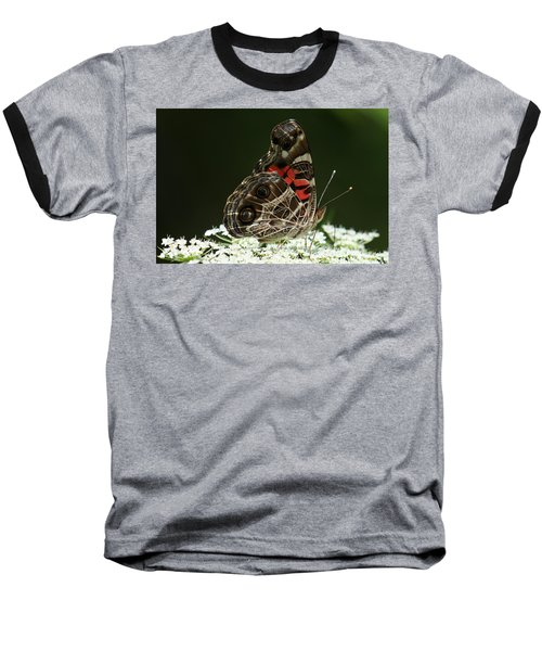 American Painted Lady Butterfly Baseball T-Shirt
