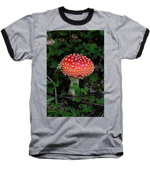 Aminita Baseball T-Shirt