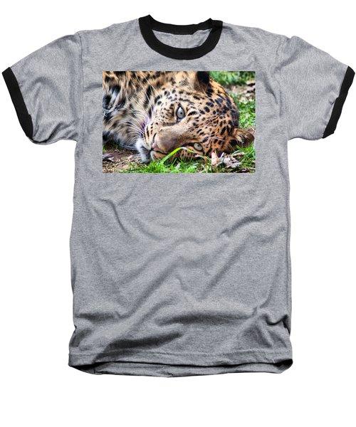 Baseball T-Shirt featuring the photograph Amur Leopard by Lynne Jenkins