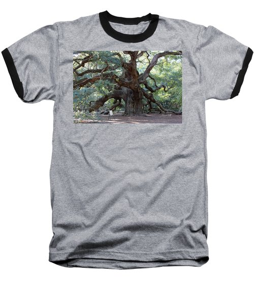 Angel Oak - Dont Climb Or Carve On The Tree Baseball T-Shirt