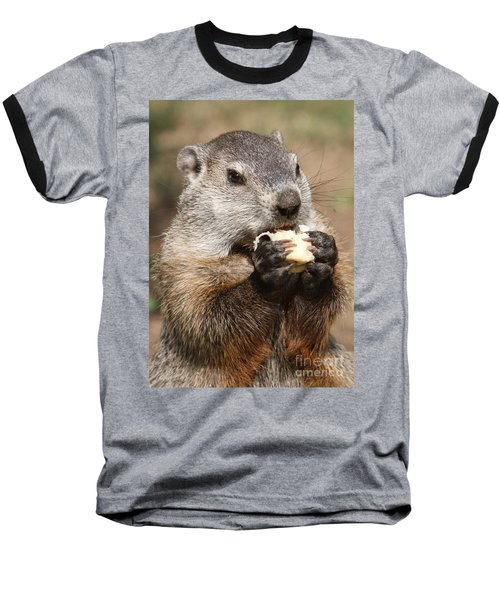 Animal - Woodchuck - Eating Baseball T-Shirt