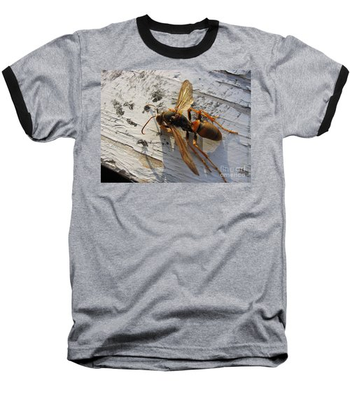 Apache Red Wasp Baseball T-Shirt