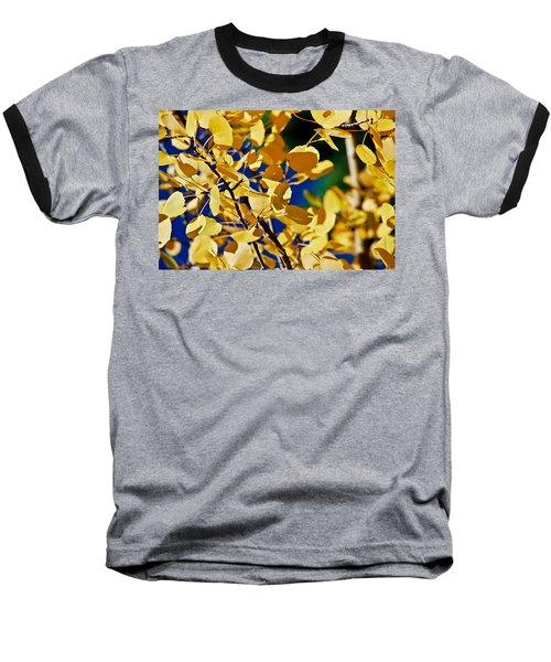 Aspen Gold Medallions Baseball T-Shirt