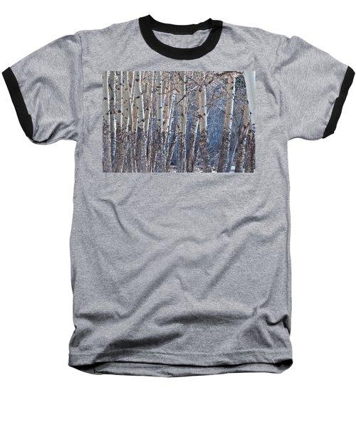 Aspen Grove Baseball T-Shirt by Colleen Coccia
