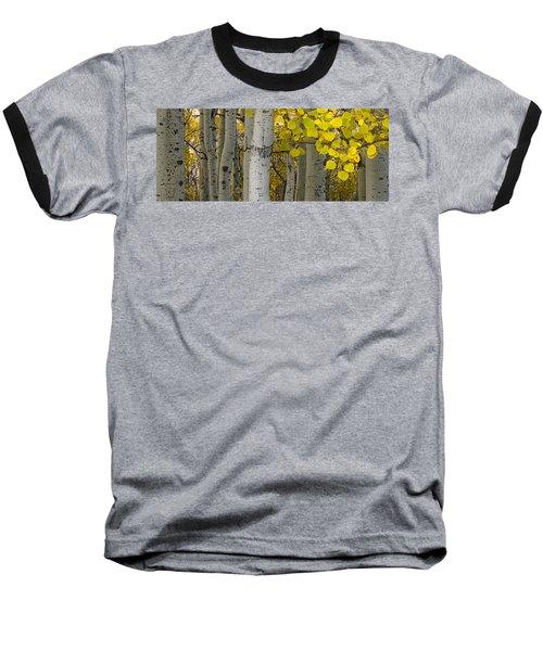 Aspen Panorama Baseball T-Shirt