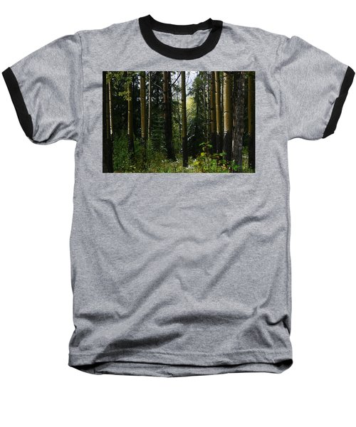 Aspens Banff National Park Baseball T-Shirt