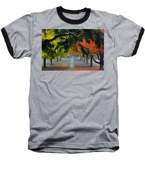 Autumn Canopy Baseball T-Shirt by Lisa Phillips