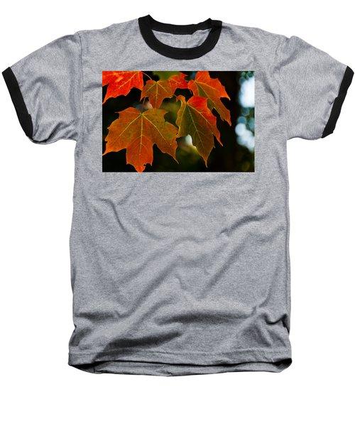Autumn Glory Baseball T-Shirt by Cheryl Baxter