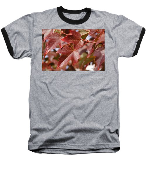 Autumn In My Back Yard Baseball T-Shirt by Mick Anderson
