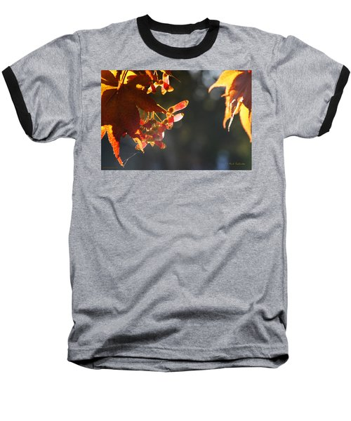 Autumn Maple Baseball T-Shirt by Mick Anderson