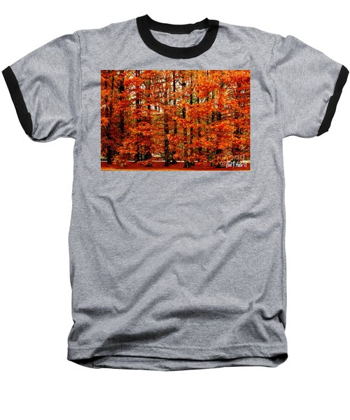 Autumn Red Maple Landscape Baseball T-Shirt by Carol F Austin