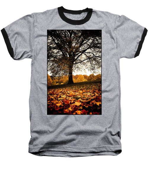 Autumnal Park Baseball T-Shirt