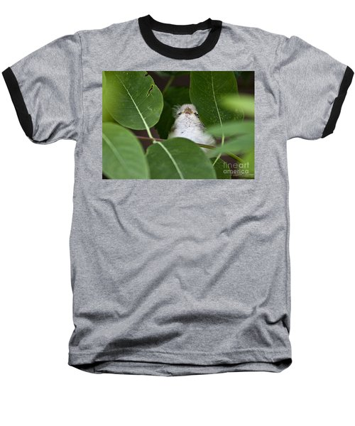 Baby Bird Peeping In The Bushes Baseball T-Shirt by Jeannette Hunt