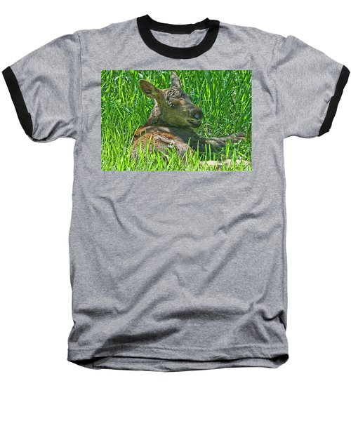 Baby Moose Baseball T-Shirt