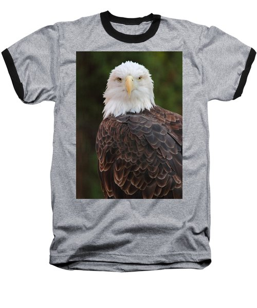 Baseball T-Shirt featuring the photograph Bald Eagle by Coby Cooper
